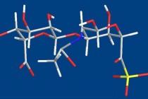 Condroitim sulfato: estrutura, uso e implicações na saúde