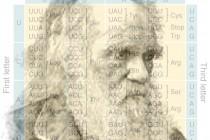 Sobre como o código genético corrobora o darwinismo