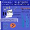 Um programa para a identificação de locos anônimos em genomas de primatas