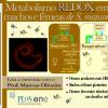Metabolismo redox em Schistosoma mansoni