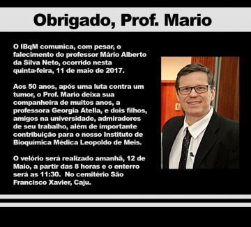 Obrigado, Prof. Mario.