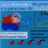 Propriedades eletrostáticas do proteoma e o processo de tradução