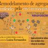 Orto-iminoquinona: uma molécula capaz de inibir agregação de fibras amiloides
